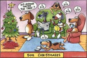 dog-waters-christmas-tree-funny-christmas-pictures