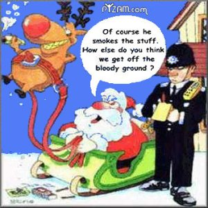 funny-christmas-quotes-5